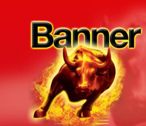Banner GmbH