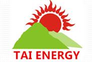 东平泰新能源有限公司