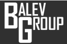 Balev Group