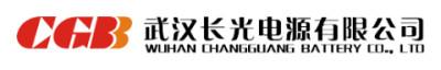 武汉长光电源有限公司
