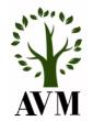 AVM Engineering Sp.z o.o.