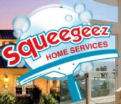 Squeegeez Solar Panel Cleaning Services
