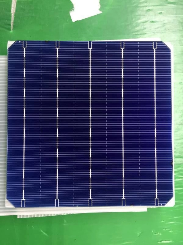 156mm Bifacial Mono cells -5BB