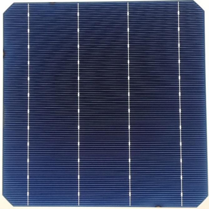 Mono-156.75-4BB PERC(21.8%-22.3%)