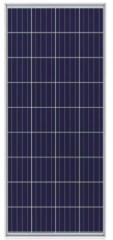 CHN 36P(P156)