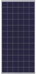 CHN 72P(P156)