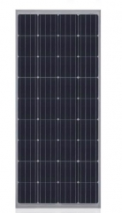 CHN 36M(M156) 155-165