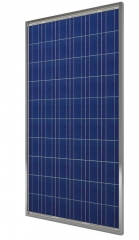 Polycrystalline photovoltaic modules 245 Wp