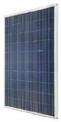 YS250-290P-60