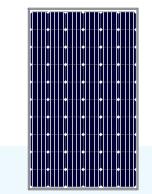 LN300(36)M-4 (320-335W Mono)