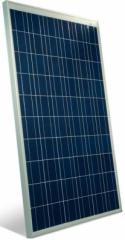 PNX-100-120