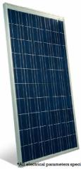 PNX-250-300