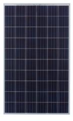SP 255-290 - P60