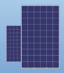 Eco Shine-60P 265-280W