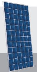 SG325P