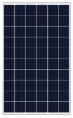 MS-P 260-295(60)