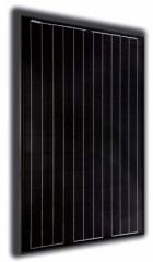 ALX-205M Black Pearl
