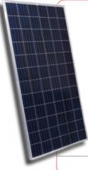YY300P72 Series