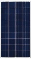 BS120-135P36