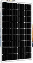 PLM-110M-36