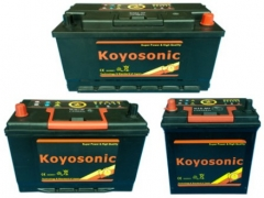 SMF Batteries BCI Series