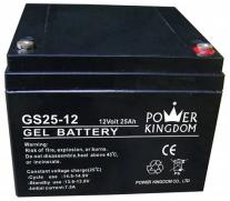 GS25-12
