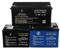 LiFePO4 Battery Pack 12V/24V